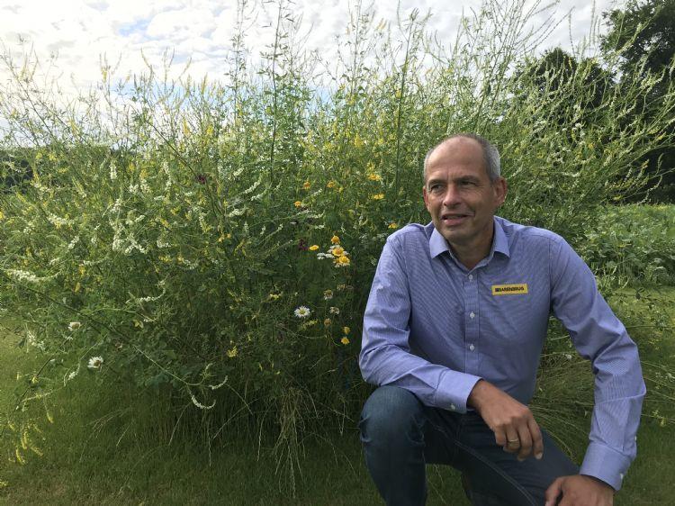 Jan van den Boom: 'Je kunt wel lukraak bloemenmengsels inzaaien voor de biodiversiteit, maar als hierdoor auto's tegen elkaar botsen of in de berm op een betonblok stuiten, schiet je je doel voorbij.'