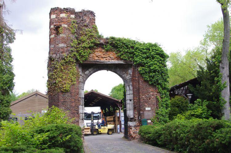 Waar de komende jaren een weelderig stadspark gerealiseerd wordt, rijden nu nog trucks en heftrucks af en aan..