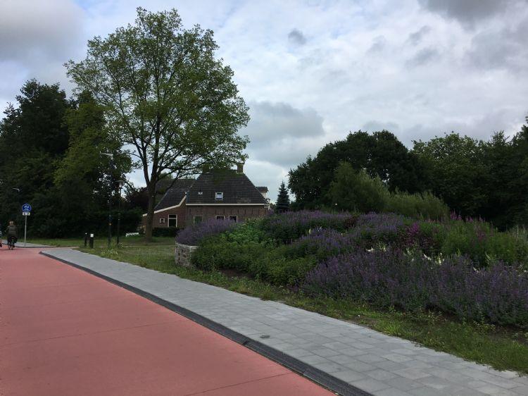 Zorgeloos groen in Drachten met bijenhotel (links)