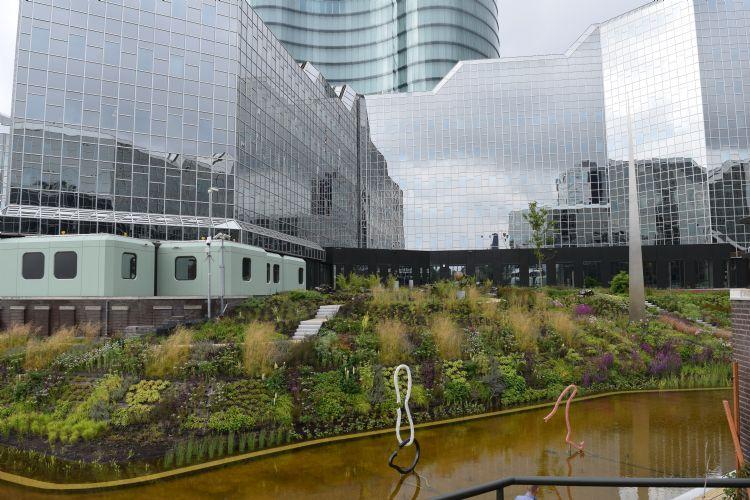 De tuin van de Rabobank in Utrecht is geschikt om in te ontspannen en om heerlijk van te snoepen. Foto: Lodewijk Baljon landschapsarchitecten