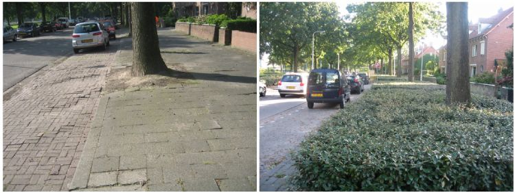 Bodemverbeteringsproject in Tilburg. Links de situatie voor, rechts na. Foto: Alles over Groenbeheer