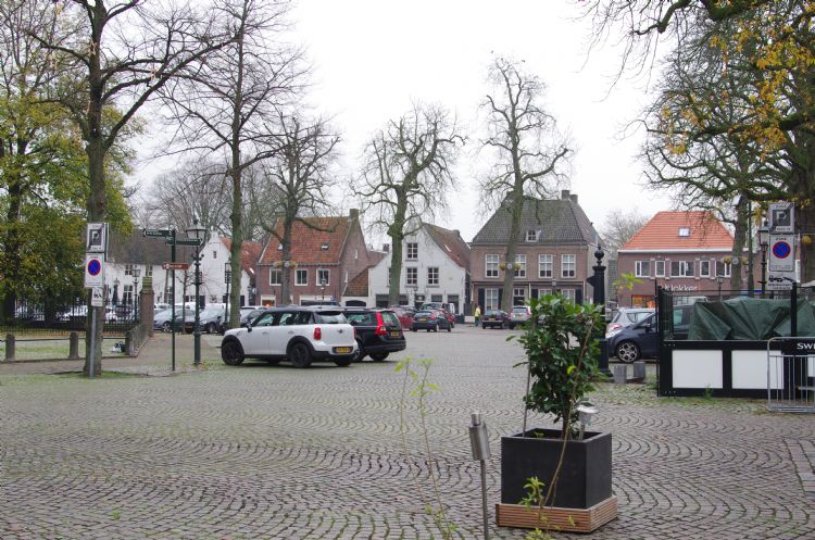 De karakteristieke bomen rond het Marktplein van Oirschot hebben het zwaar.