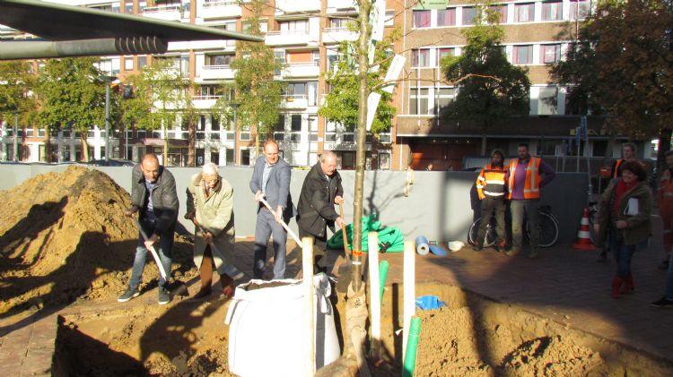 Aanplant van de gewonnen boom in Wageningen