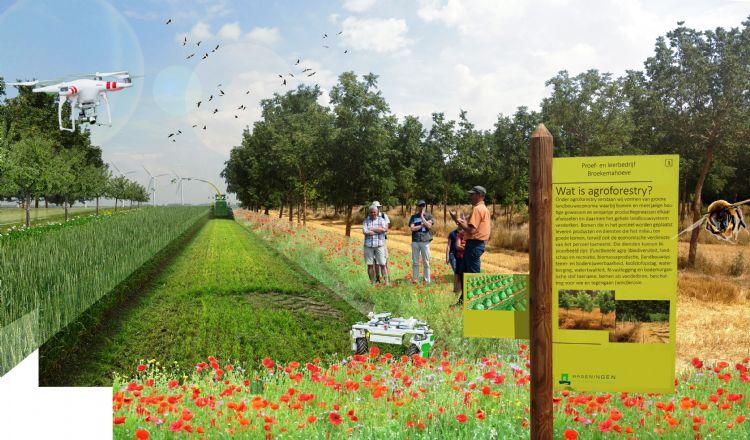 Visualisatie in het veld (bron: Fogelina Cuperus WUR)