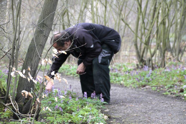 Walter Busse, voorman Heemgroen Gemeente Amstelveen, in het Thijssepark. Foto: Carien van Boxtel.