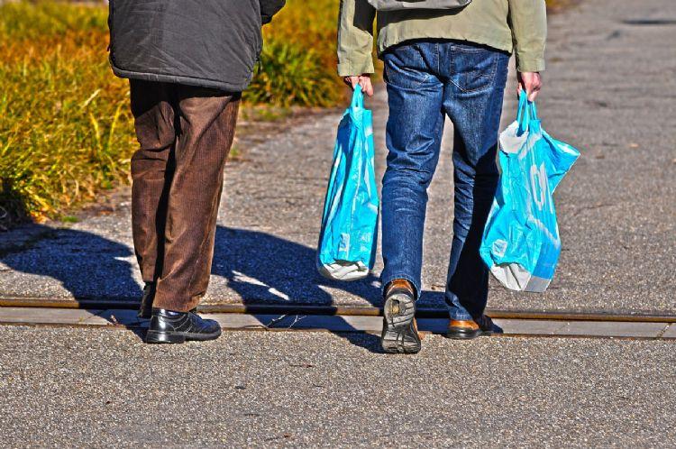 Versnipperde plastic tassen bevuilen het Groningse natuurgebied.