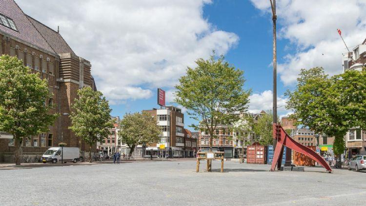 Bomen op de Neude in Utrecht. Foto: Eijkelboom Utrecht, De Eijk Groep