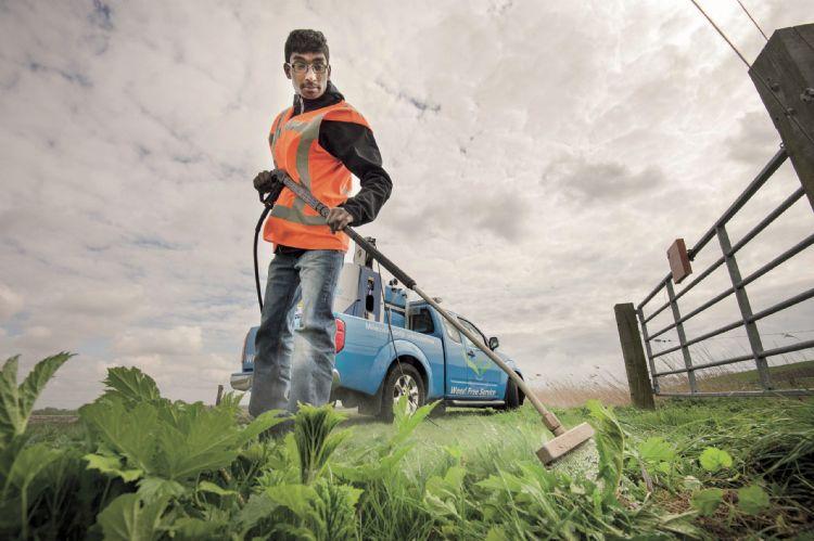 Weed Free Service gebruikt ook heet water in de bestrijding van invasieve exoten