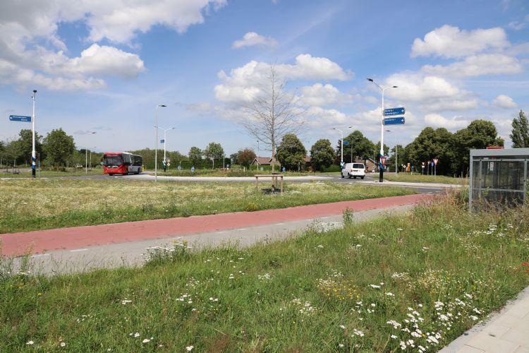 Steeds vaker wordt in de openbare ruimte gekozen voor de toepassing van meerjarige mengsels met kruiden en veldbloemen.